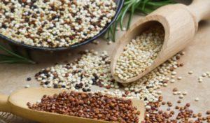 hat quinoa giau chat chong oxy hoa